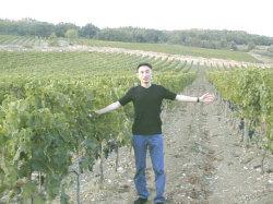 ブドウ畑/サン・ファビアーノ・カルチナイアSan Fabiano Calcinaia/トスカーナ/イタリアワイン